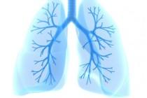 ХОБЛ — хроническая обструктивная болезнь легких