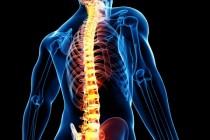 Боли в спине и травмы позвоночника