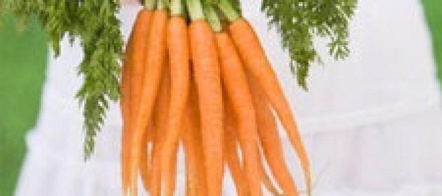 Морковь — секретное оружие против рака