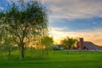 Жизнь в частном доме и здоровый образ жизни