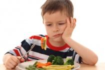 Надо ли заставлять ребенка есть