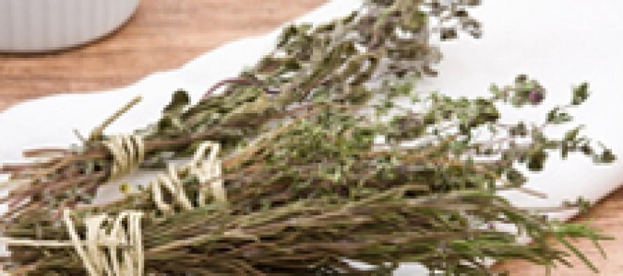 «Розетка»: онлайн аптека как экономный способ поиска и приобретения лекарственных трав