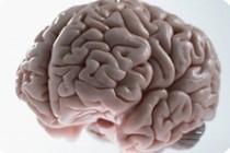 Первые симптомы рассеянного склероза появляются раньше, чем считается