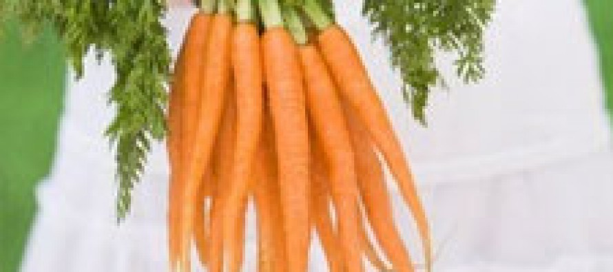 Морковь – секретное оружие против рака