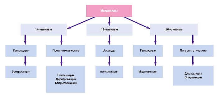 макролиды классификация - Vklinike.com