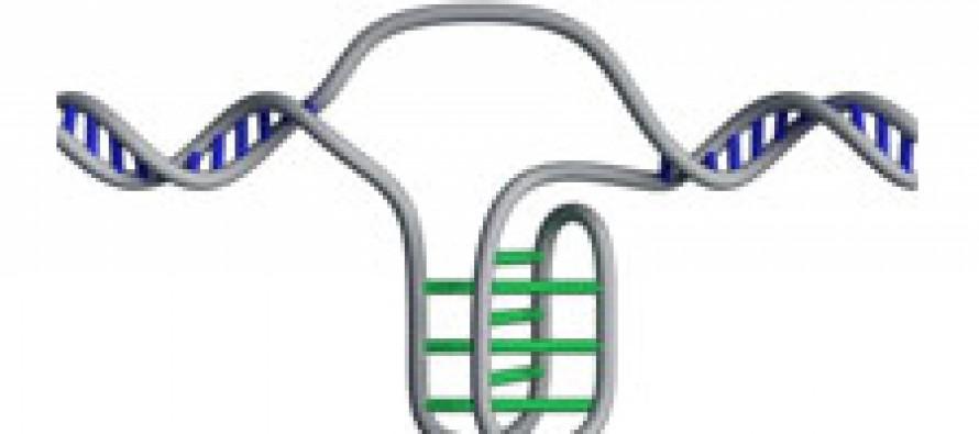 Обнаружена новая форма молекулы ДНК
