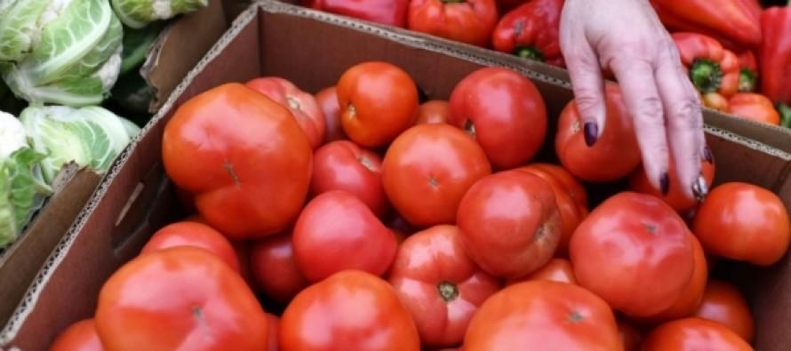 Ученые рассказали, от каких болезней защищают помидоры