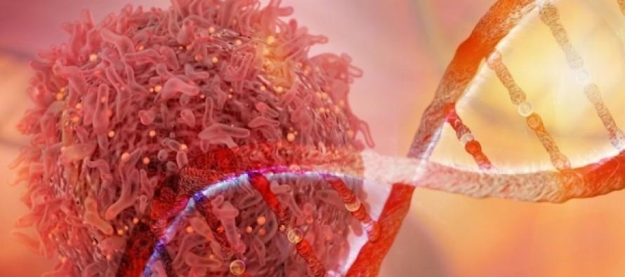 Ученые рассказали о новом способе защиты от рака