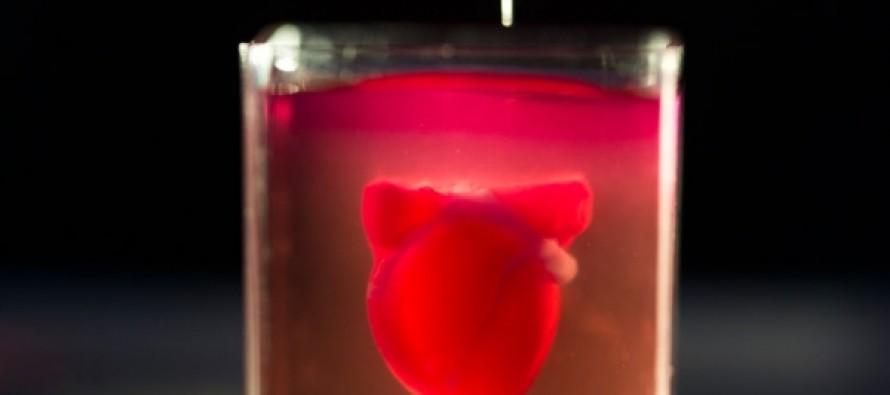 Впервые с помощью 3D-принтера создали работающее человеческое сердце