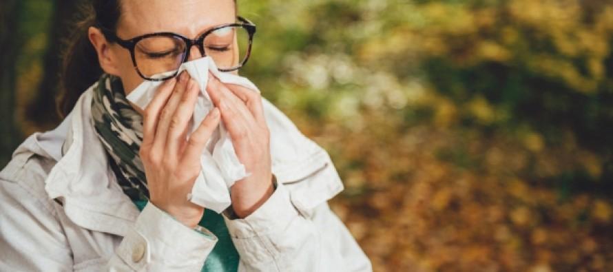 В Минздраве рассказали о способах борьбы с аллергией